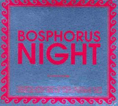 Bosphorus Night by Suat Atesdagli
