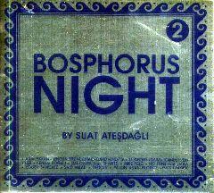 Bosphorus Night 2 by Suat Atesdagli