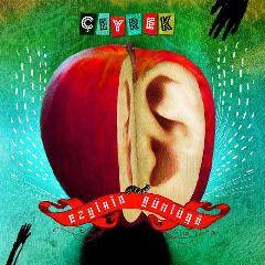 Ceyrek (25. Yil ozel Albumu)
